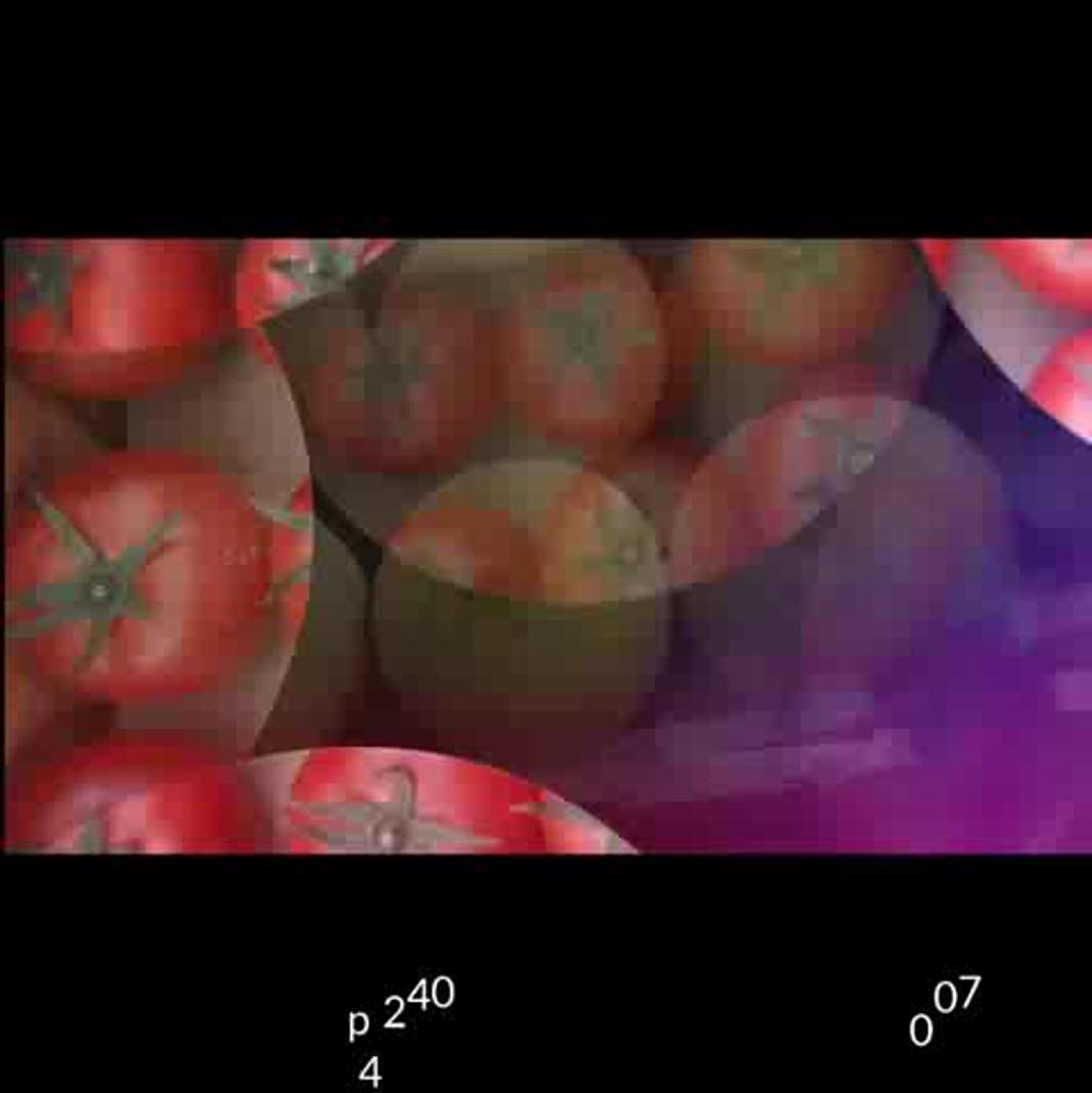 هندوانه ب 32 تولید کنید و برای فروش با گوزلی فروت هماهنگ کنید صادرکننده هندوانه به قطر، کویت، روسیه